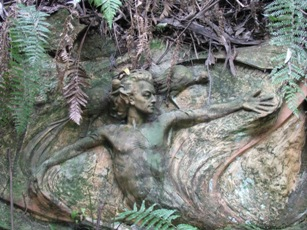 Wood nymph - William Rickett's Sanctuary