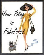 Your blog is fabulous blog award